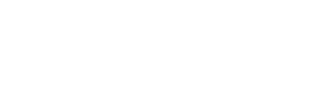 suncorp-graphic